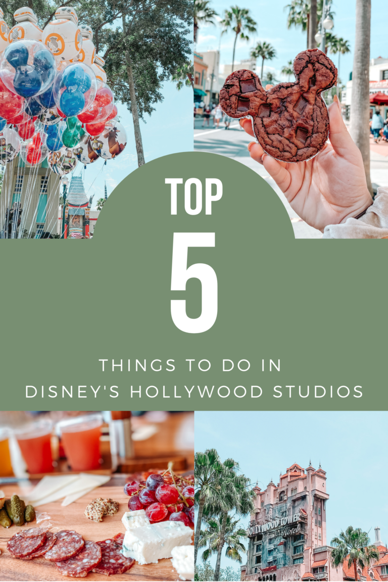 Top 5 Things to do in Disney's Hollywood Studios